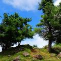 爬山欣賞風景