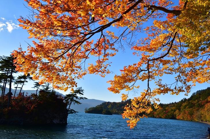 湖 十和田