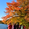 十和田湖繽紛秋色