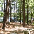 從小屋所在地看湖面