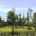 台北南港新新公園