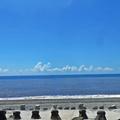 海報裡的夏天:太平洋海岸