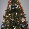 版主花了3天規劃與佈置聖誕樹、聖誕花圈 24日晚上點燈有340個燈 聖誕樹2角度拍攝花了1個小時拍完 效果很滿意 非常開心 2009-12-24 今年有拍聖誕紅好漂亮喔 聖誕樹彩條有紅*白*紫*藍色 2010-12-24