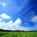 風起雲湧~~