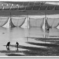 竹南中港溪的出海口,每年冬季,當地漁民會在河道上,架起漁網捕捉鰻苗。退潮時隨處可見漁民不畏天寒工作的身影,展現出漁鄉獨特的庶民美學。