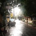 雨中的溫州街