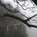 湖南 張家界  上海 南京 蘇州 杭州 無錫  三月二十一日至四月三日二零一六