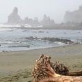 Shi Shi Beach 01