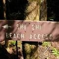 Shi Shi Beach Access