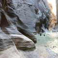 美國錫安國家公園 Zion National Park The Narrows 步道