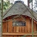 微軟總部園區裡的樹屋