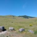 最古老的國家野牛保護區 - 3