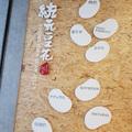 INGRESS 台中大戰美食文