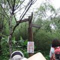 103年4月25日參加烏來福山-哈盆越嶺古道-福山植物園,走了7個小時