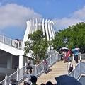 台中花博:后里森林園區(花花步道)