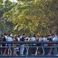台南都會公園‧奇美博物館:寶可夢Safari Zone活動