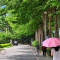 關山山水軒渡假村