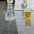 苗栗竹南啤酒廠