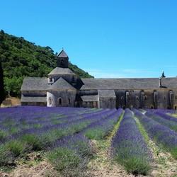 普羅旺斯【天空之城】-薰衣草的故鄕 塞農克修道院Sénanque Abbey, 薰朵葆Le Château du Bois - 1