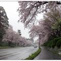 金澤城公園位於日本石川縣金澤市,是以江戶後期的城郭為基礎,改建成的地標公園。