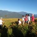 2012   9月4日       浸潤在六十石山的黃色花海中 品味了江山多嬌的醉人美景 於是 我拍下了豐盈生命的美麗