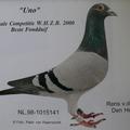 NL98-1015141遊龍(UNO)