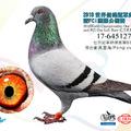 20181128 德國信鴿文化博覽會DBA南京展 - 1