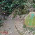 羚羊峽古棧道