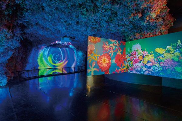Epson光影實驗室 六大空間情境投影應用新亮相 聲光環繞猶如身歷其境 創造新視野