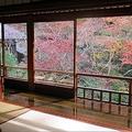 京都琉璃光院