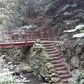 虎山溪步道是一段親山步道,雖只短短數百公尺,但生態豐富,螢火蟲也在此復育成功。