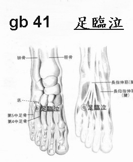 gb/g41:足臨泣Lin2 Chi4 - 經絡學acupuncture points - udn部落格
