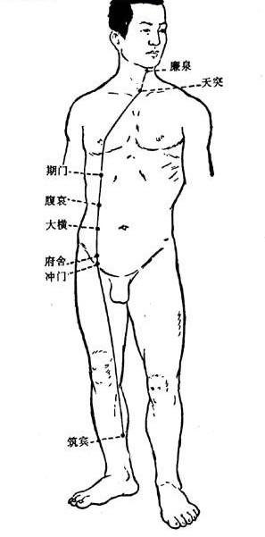 32/17: (L.V.)Yin Link Vessel -...