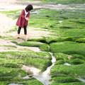 北海岸老梅藻礁