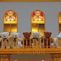 寶麗廣場熊寶貝