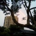 20140613紀州庵文學森林