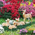 2020士林官邸菊展以《藝菊童遊》為主題;「秋菊、童趣、親子互動」是花展的概念。