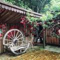 愛麗絲的天空,位於苗栗銅鑼的幽靜山林裡,花木扶疏,青翠茂密,有歐風建築,也有中式庭園,是可提供婚紗攝影的祕境。