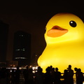 duck  at kaohsiung2013