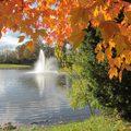 秋的大軍披著大片橙紅、少許鵝黃、幾點蒼綠,密密填滿你的視野。就讓他霸道的佔領這不長的一段。水塘如鏡,無負擔的舒爽明淨.
