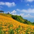 *台灣風景點照片00015.jpg