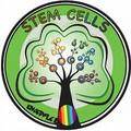 *幹細胞照片0007
