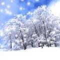 *雪花005