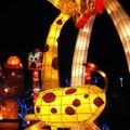 (097)2013台灣燈會在新竹-六福村長頸鹿花燈