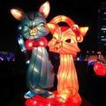 (105)2013台灣燈會在新竹-雙貓花燈