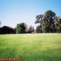 (250)墨爾本-皇家植物園