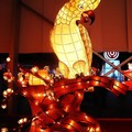 (287)花燈文化工藝特展-葵花鳳頭鸚鵡花燈