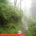 (013)大凍山國家森林步道