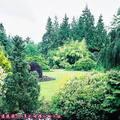 (323)溫哥華-伊利莎白皇后公園