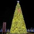 (254)產業燈區-黃金祈福樹